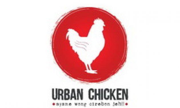 urban-chicken-cirebon
